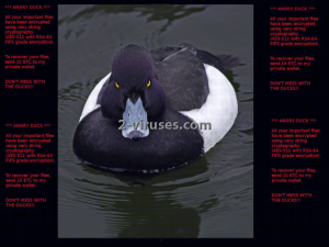 Angry Duck ransomware