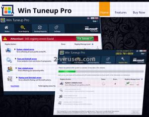 Win Tuneup Pro (ウィン・チューンアッププロ)